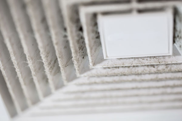 Blokages, meld dew or mold in Air Ducts